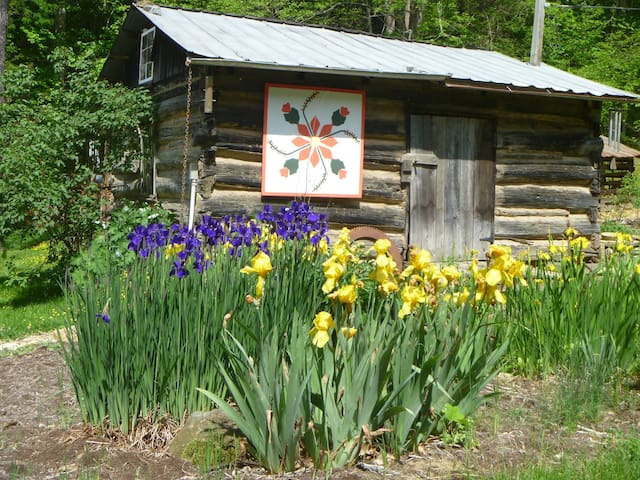 Cabin and Food near Asheville - Mars Hill - Chalet