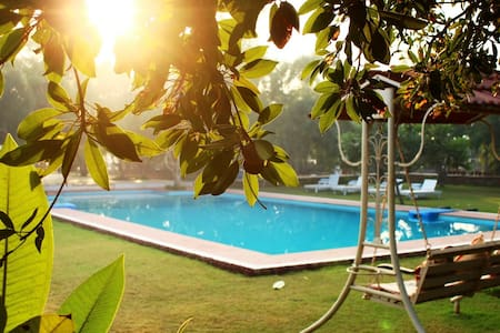Organic Farm & Resort in Pushkar -1 - Pushkar