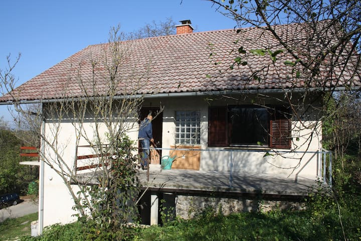 Rustic House in a Beautiful Village - Bušeča Vas - Ev