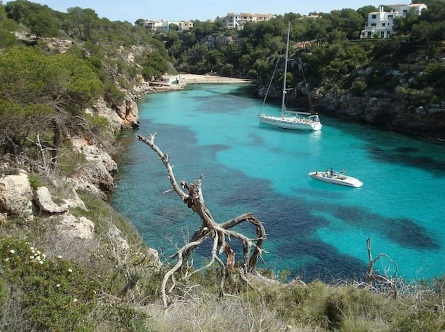 Room to rent in shared apartment - Palma