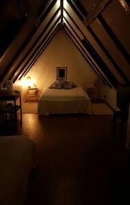 Stort hyggeligt værelse - Aalborg - House