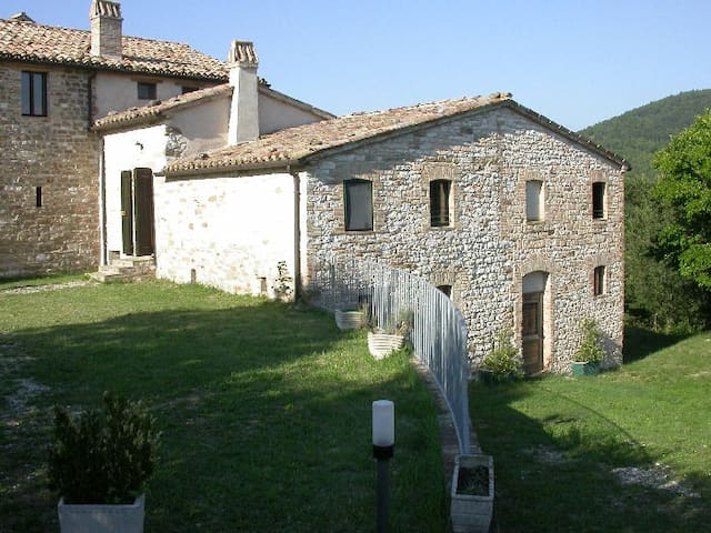 Apartment in ancient farmhouse 2 - Arcevia - Appartement