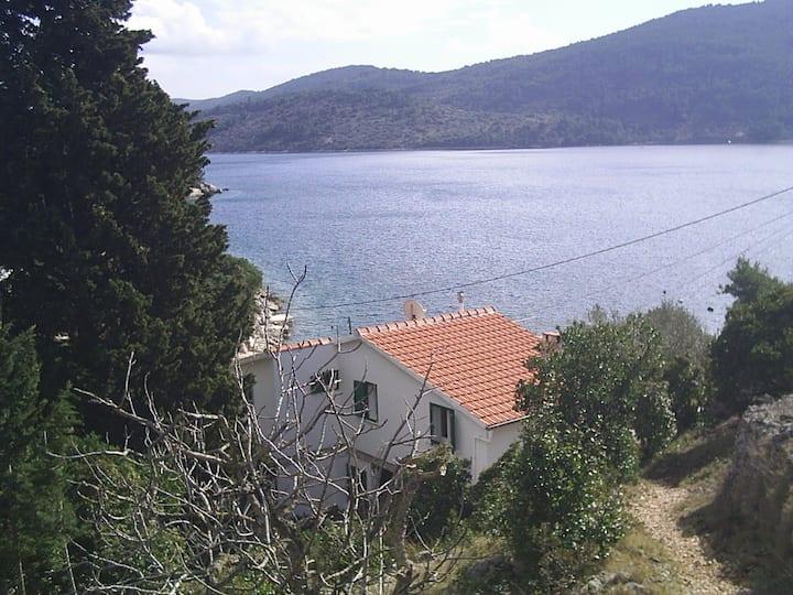 House Vjeka apartments Vela Luka 30m from the sea