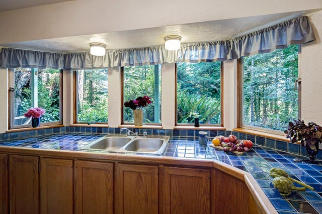 Watch the Redwoods from all windows!