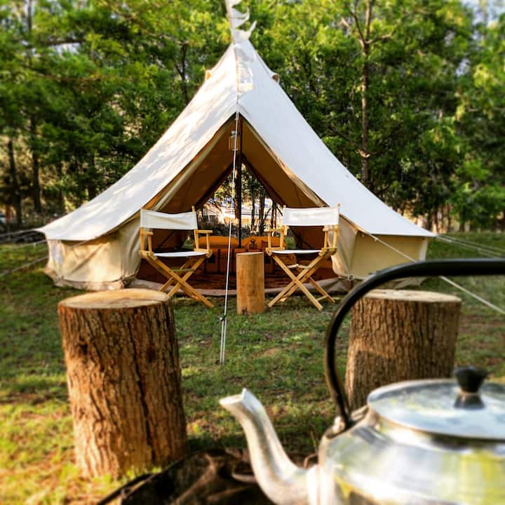 Bell Tent in Shaded Campsite under Pecan Nut Trees