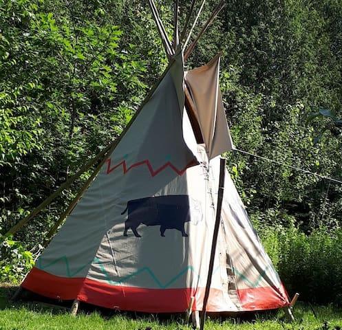 Tipi Sioux à même la propriété!