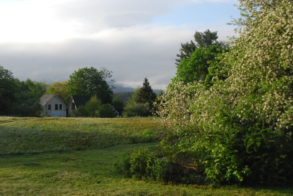 View from the field towards the house with mountains beyond