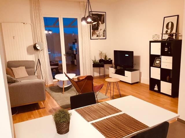 3.5 Zimmer Wohnung (SH) befristet (Jan 20-Apr 20)