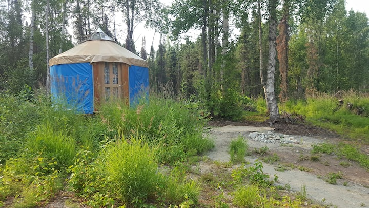 Best yurt camping in the woods