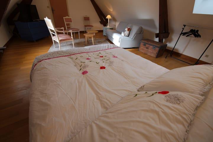 Chambre 2 : 1 lit 160x200 + 1 canapé convertible (lit 140x190). 29m2 / Second bedroom : 1 bed 160x200cm + 1 convertible sofa (bed 140x190). 29 Sq m
