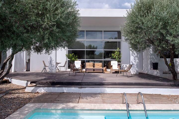 Maison contemporaine dans les oliviers