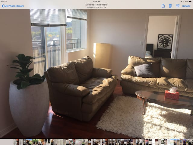 1 bedroom penthouse in condo