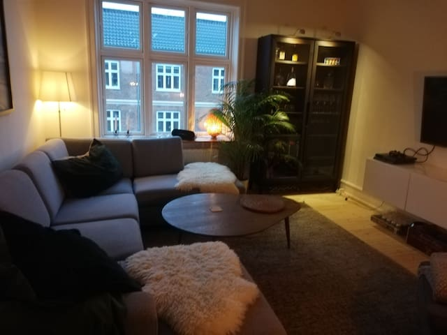 Cozy apartment 15 minutes from central Copenhagen