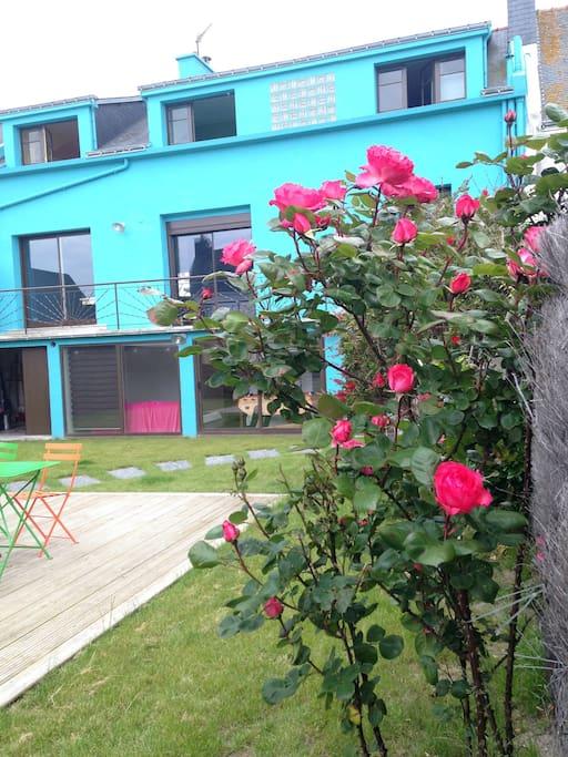 La maison bleue au milieu des roses