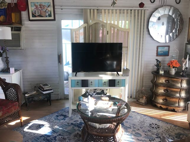 Sitting area below loft includes a flat screen TV with Amazon and a comfy  leather couch that pulls out to sleep two more adults or children.