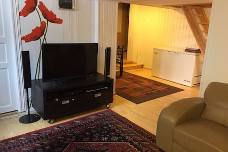 Basement Apartment with parking - Lørenskog