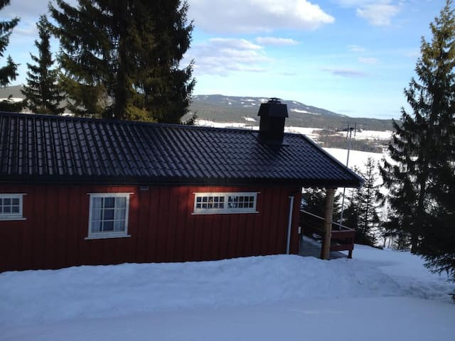 Norwegian cabin experience, close to Oslo AirPort