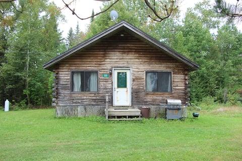Birch hill camp