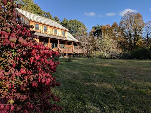 Fall Firebush