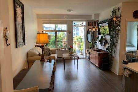 Eclectic, Clean & Cozy.  Apartment.