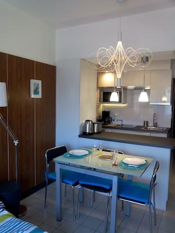 T1 bis rénové 3* quartier grand port - Aix-les-Bains - Apartment