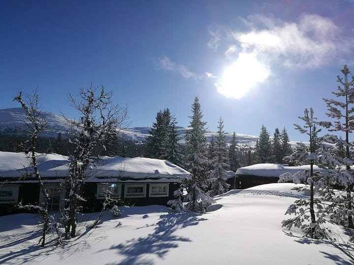Koselig hytte på Fageråsen i Trysil - ski in/out