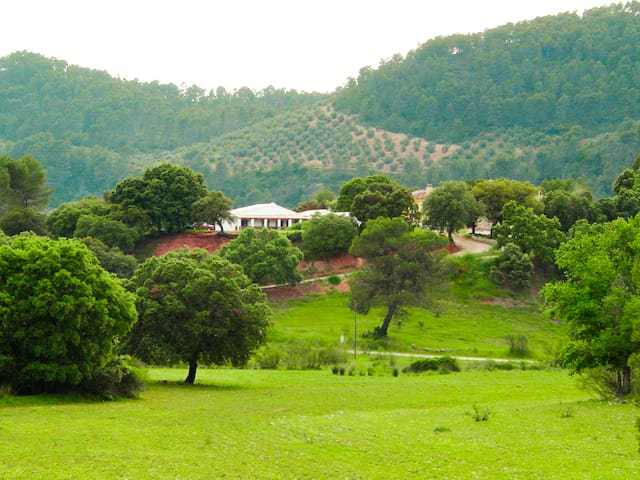 Casa Rural Los Palenques