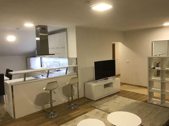 Spacious Apartment in Sarajevo (newly renovated)