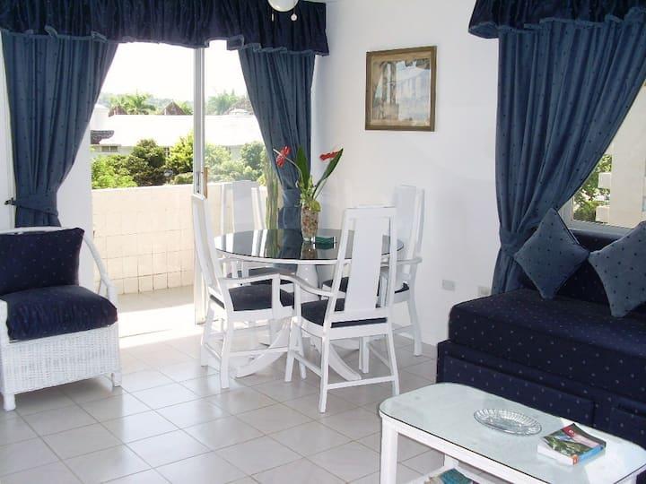 Magnificent Oceanview Apartment Ocho Rios, Jamaica