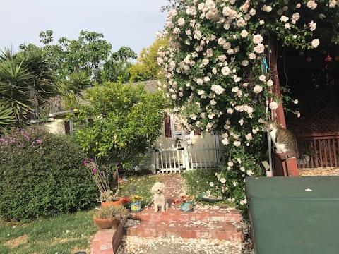 Charming studio cottage in garden