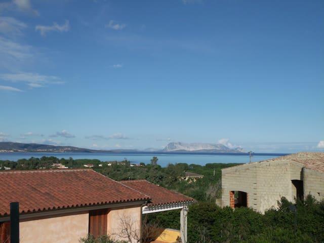Bilo vista mare Baia Sant'anna - Budoni - Apartment