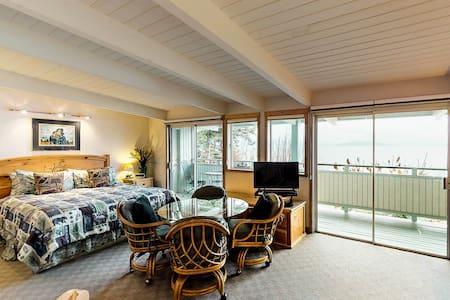 Studio condo on Flathead Lake w/water & mtn views, shared dock, & jetted tub!