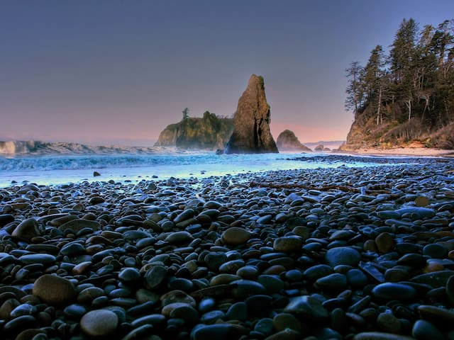 Must Do: Explore the Washington coastline!