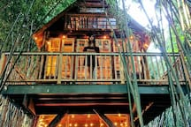 Gorgeous photo taken by a treehouse guest.  We have fairy lights on both levels.