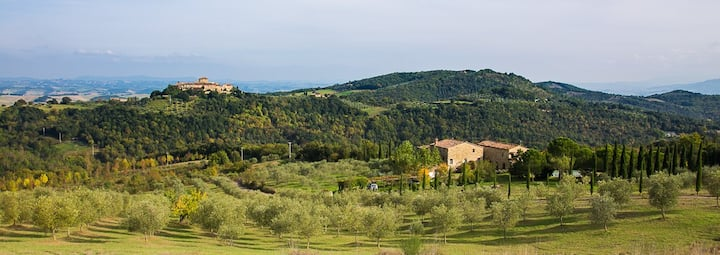 Apartments & pool in typical Tuscan farmhouse