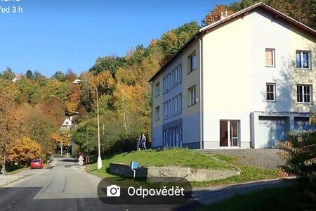 Apartman 1+1 Český Krumlov