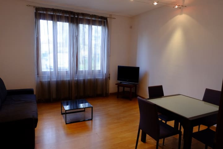 Spacious and cosy one bedroom apartment - Saint-Louis - Leilighet