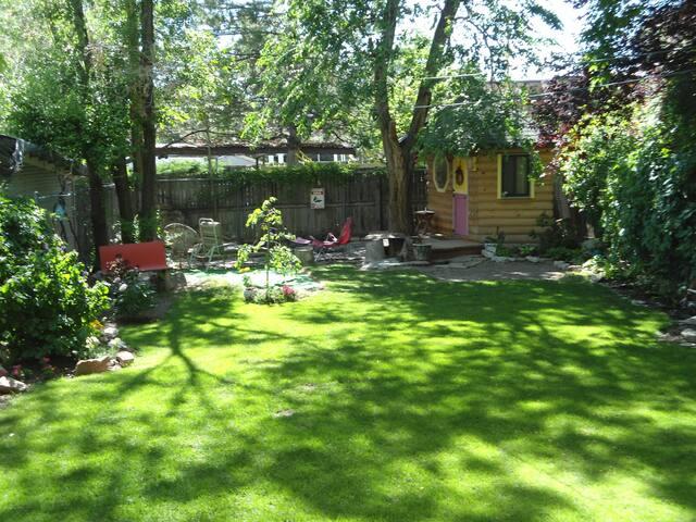 The backyard in spring.