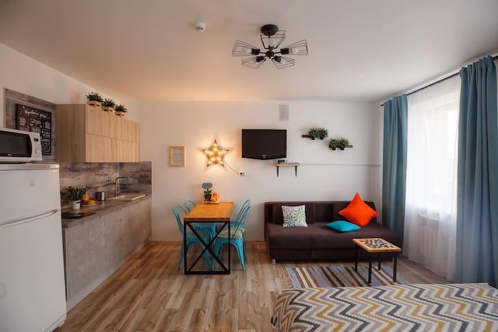 Квартира-студия Лофт Рыбы2