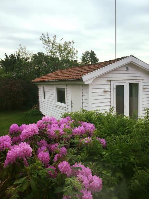 Den nyrenoverade stugan med egen uteplats ligger på framsidan av värdparets hus.
