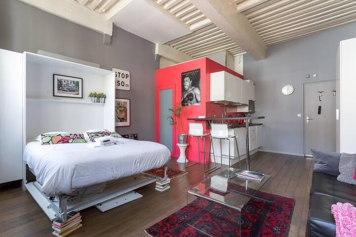 Large studio-renovated *Lyon 1st Arr*
