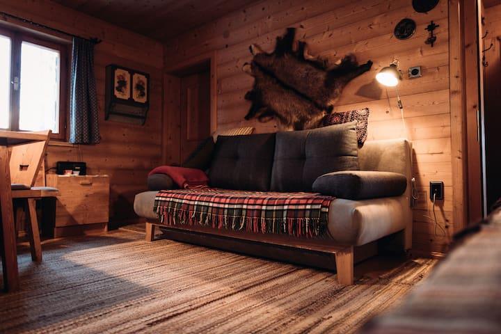 Schlafsofa im Wohnzimmer