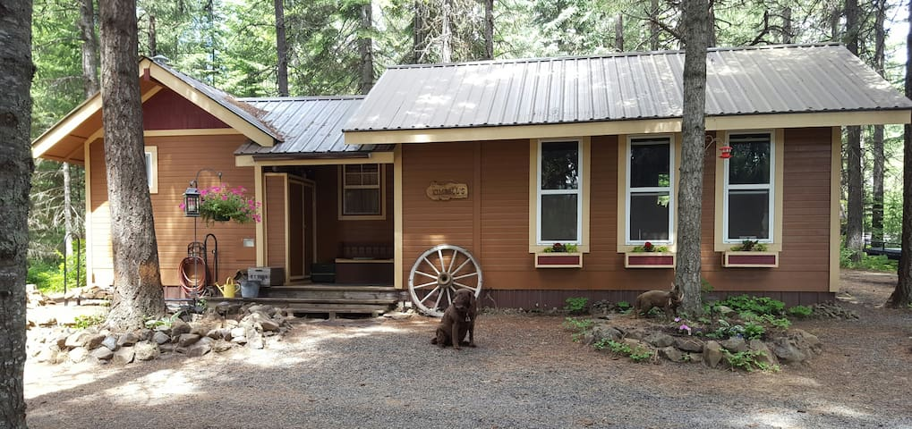 Tiny House Mountain Cabin - 448 Sq. Ft.