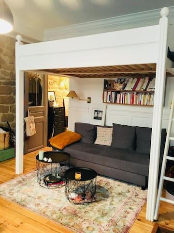 Charmant studio idéalement situé / République