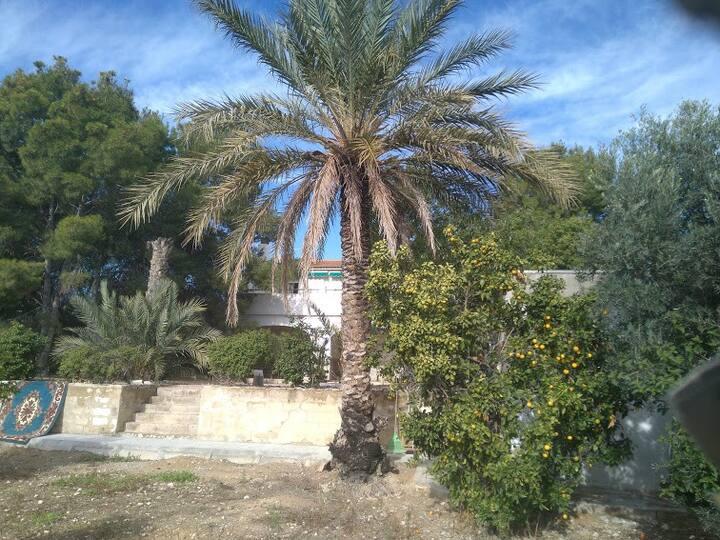 Chalet zona rural con piscina nueva.