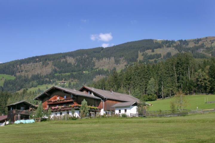 Bauernhaus Hollersbach