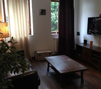 Maison atypique près de CDG - Dammartin-en-Goële