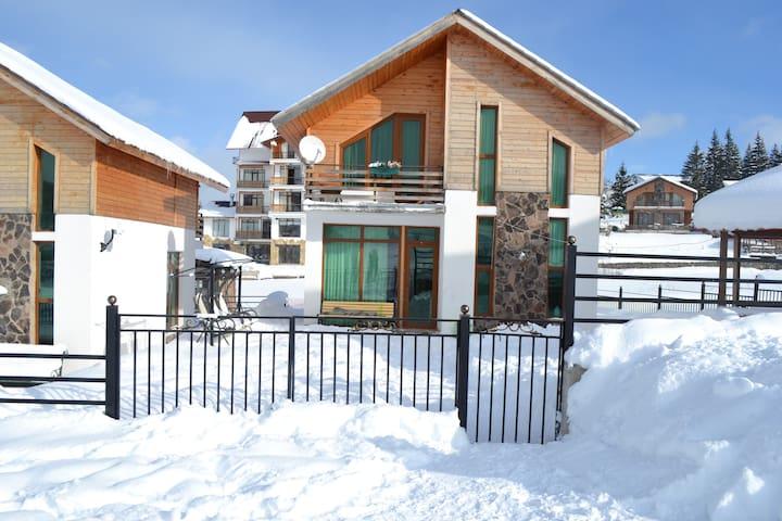 """Cottage """"Bakuriani"""" - Bakuriani - House"""