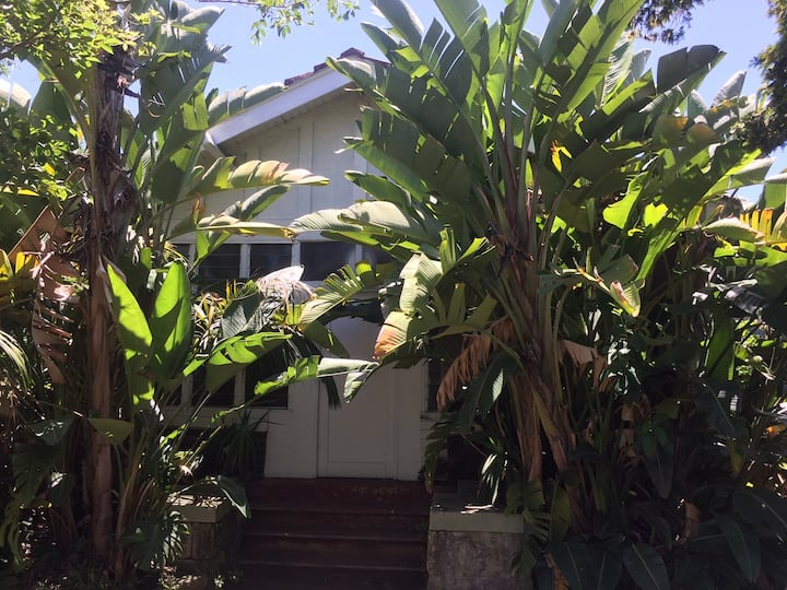 PRIVATE ROOMS IN A RANDWICK - COOGEE SHARED HOUSE