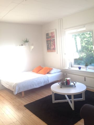 Spacious and cozy room by DTU - Kongens Lyngby - Apartment